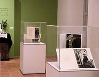 Las Brujas | Exhibición Museografía