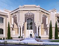Just new classic villa in IRAQ