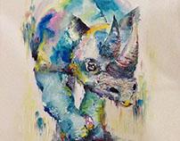 Rhinoceros as a new friend