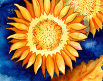 Sunflower DIY Watercolor