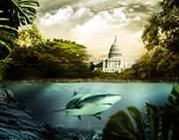 Fusão   American Capitol