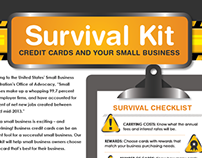 Credit & Small Business Infographic