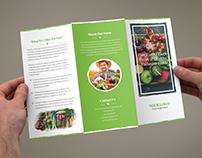 Brochure – Organic Food Tri-Fold Template