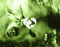 Sociedade Protectora dos Animais de Guimarães