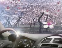 Lexus Transcend Storyboard
