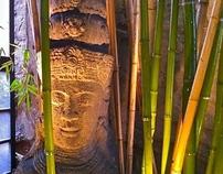 mw design group llc  small city gardens w/bamboo
