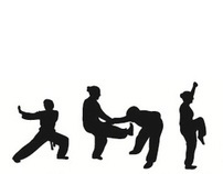 Seven Star Women's Kung Fu logo