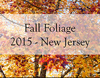 Fall Foliage - NJ 2015