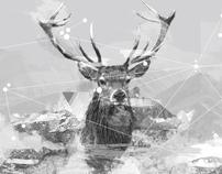 The Wild Hunt / Process Journal