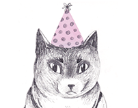 cat in a party hat