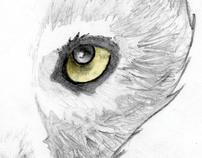 Animal tee series