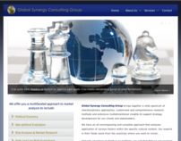 Global Synergy Consulting Group