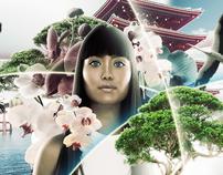 Asian Beauty Style Art