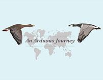 An Arduous Journey   Final Major Project