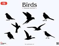 Free Birds Silhouette PSD
