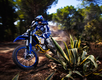 Off Road Motorbikes II