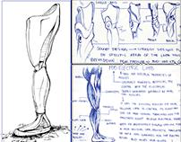 Prosthetic Leg Design Experiment