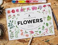 Watercolor Flowers Pack Vol 01