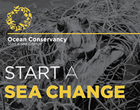 Start A Sea Change Annual Report