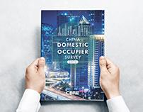China Domestic Occupier Survey 2016