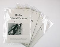 05.16 Visual Process