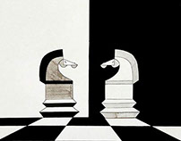 "Posters for ""Chess"" book.. Graduation Project 2016"