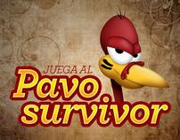 Pavo Survivor