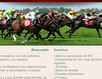 Haras La Misericordia Web Design