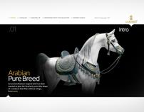 Lladró Arabian Horse - microsite