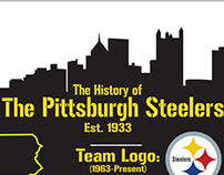 Pittsburgh Steelers Infographic Project (DID 2)