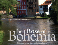 The Rose of Bohemia