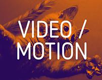 Video / Motion Graphics