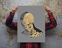Reveal | Poster Illustration
