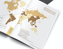 Rapport de Stage - Internship report 2016