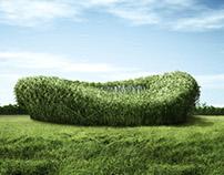 CGI Bamboo Birdnest