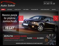 Auto-Sokol