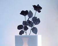 Inner Vase