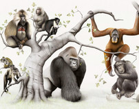 My Primate Family Tree. Edinburgh Zoo