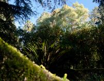 Alcazar, jardin de mystère