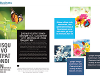 Search Results Dictionary Brochure Designs