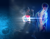 Inline Physio marketing & web design
