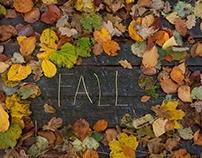 Høsten '16