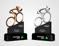 Dimension Data Trophy Design