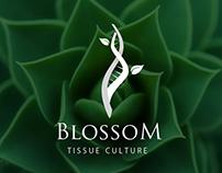 BlossoM - tissue culture