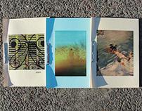 Vida de vivos * Fascículos Coleccionables