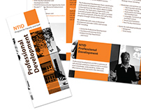 Samples of Brochures