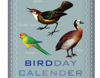 BIRDday calendar