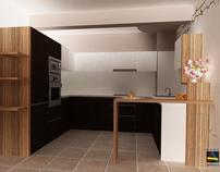 ANES Kitchen 2011