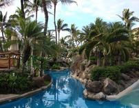 Aloha Hawaiian Paradise