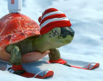 VivaCell Turtle Winter